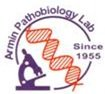 Jobs for Armin Laboratory