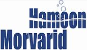 Jobs for Morvarid Hamoon