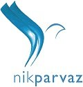Jobs for Nik Parvaz