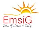 Jobs for Rahrovan Isatis Gostar (Emsig)