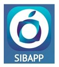 Jobs for Siba Pardaz Asre Jadid (Sibapp)
