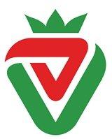 Haft Mive (7 Mive) | استخدام در هفت میوه