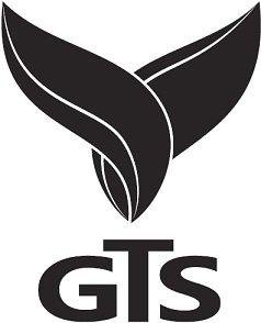 Giti Tamin Sanat | استخدام در گيتي تأمين صنعت