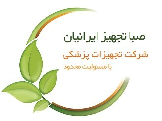 Jobs for Saba Tajhiz Iranian