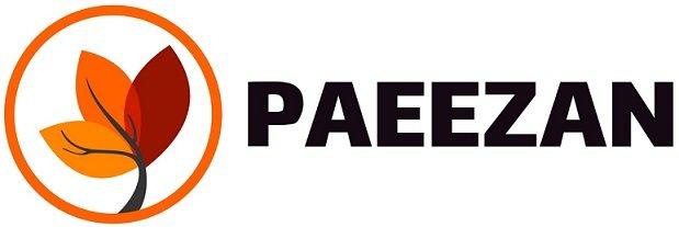 Paeezan Game Studio | IranTalent
